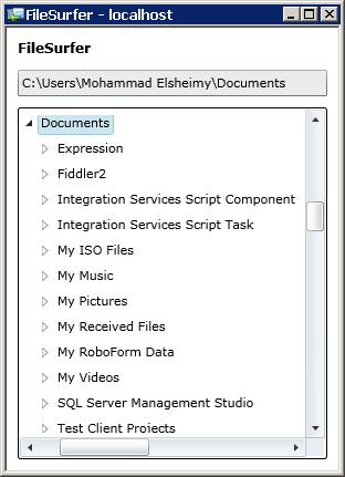 Figure 11 - The FileSurfer App